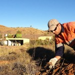 Bennelongia - surveys, identifications and environmental assessments of short range endemics (SRE fauna) terrestrial invertebrates
